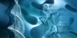 BH_bone health_metabolismo osseo_fosfatasi alcalina ossea