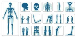 BH_bonehalth_Il ruolo dell'osteocalcina come marker