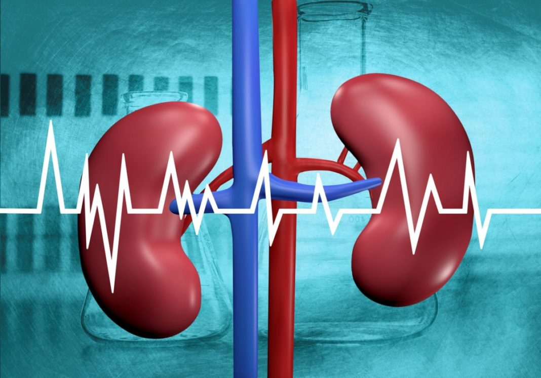 Bh_bonehealth_intake di calcio_malattia renale_nefopatia cronica