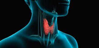 patologie della tiroide e osteoporosi